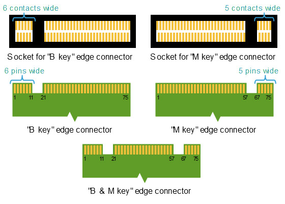 M2_Edge_Connector_Keying.jpg